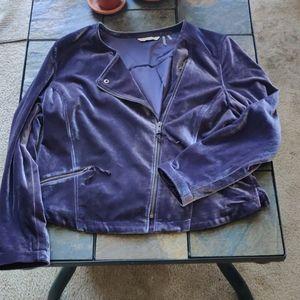 Soft Surroundings Purple Velvet Moto Zip Jacket